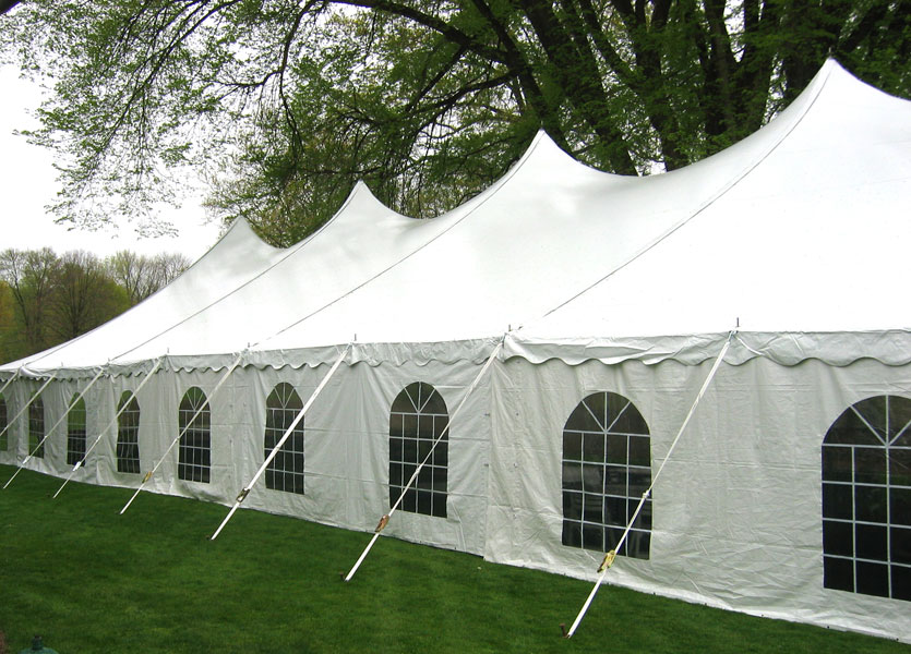 white tent set up by trees